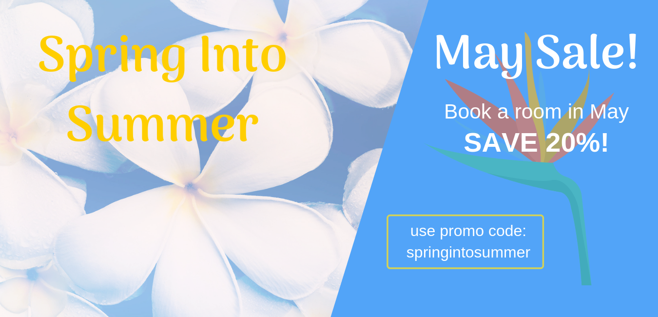 Spring Into Summer web.png