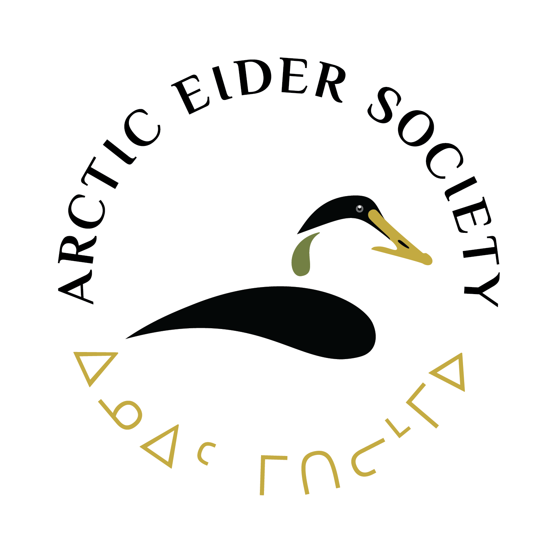 1. Main AES Logo (Circle-Dark-Protected)_1500px.png