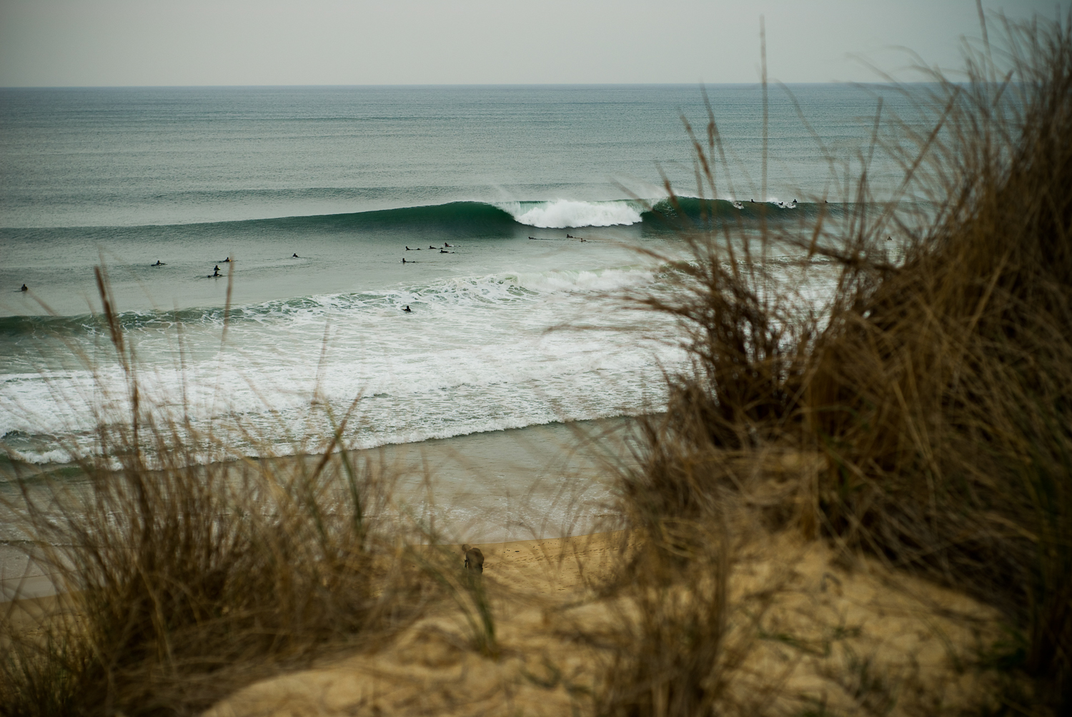 Southern France, one of the locations on the World Surf League's professional tour.