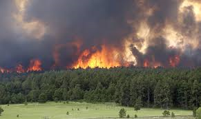 In a little over a week in 2013, the Black Forest Fire -- considered the most destructive in state history -- devoured 489 homes and killed two people