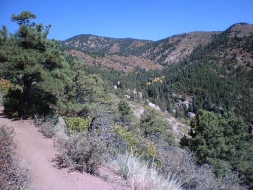 Waldo Canyon Loop Trail [CLOSED] is a 6.5 mile heavily trafficked loop trail located near Cascade, Colorado that features beautiful wild flowers and is rated as moderate. This photo is pre-waldo fire.