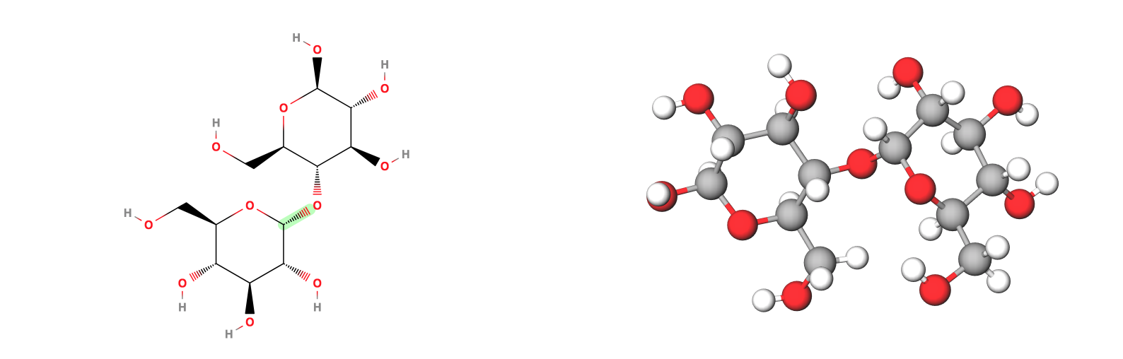 Maltose - a typical sugar - chemical structure and 3D Model