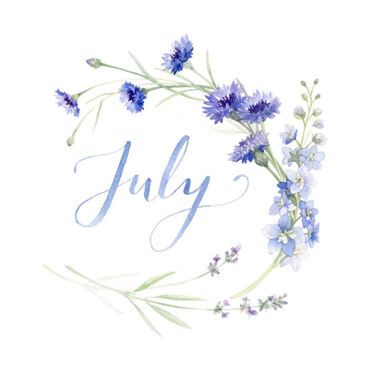July Monthly Watercolour Illustration - Alicia's Infinity