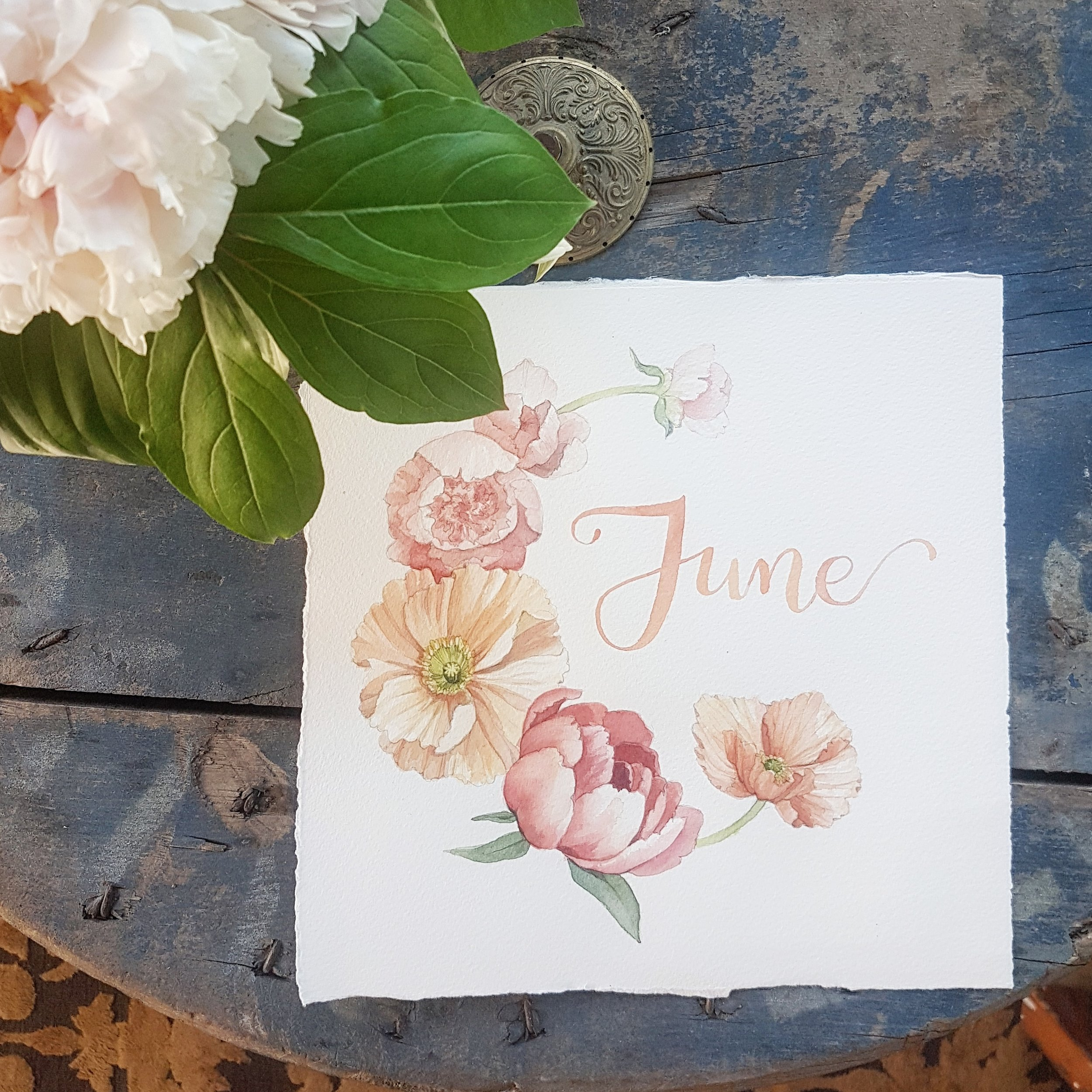 June Monthly Watercolour Illustration - Alicia's Infinity