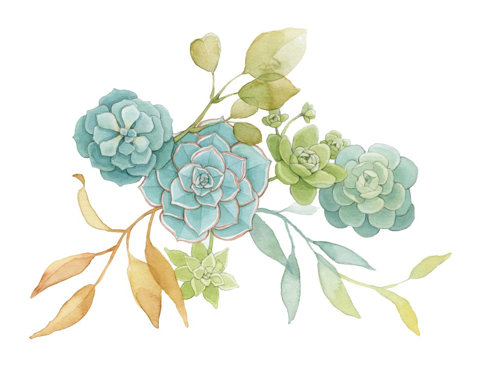 Succulents and Leaves Watercolour Art