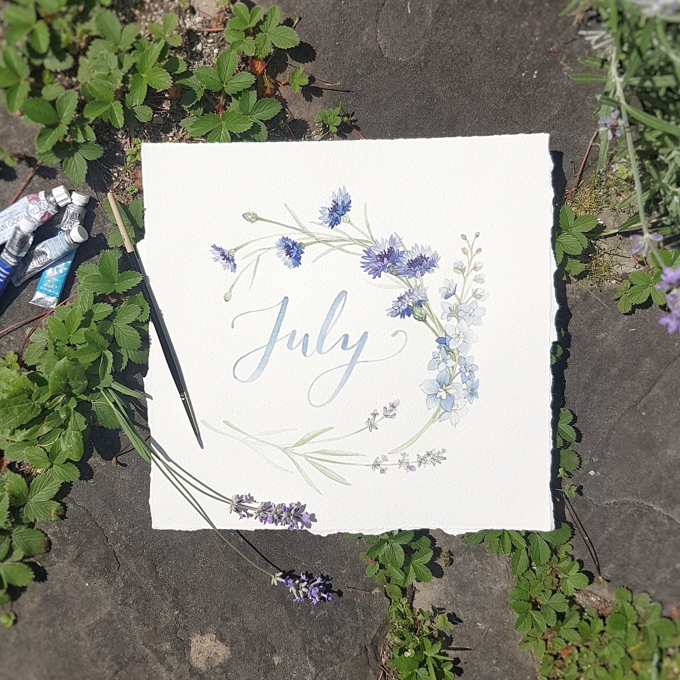 July monthly watercolour floral illustration