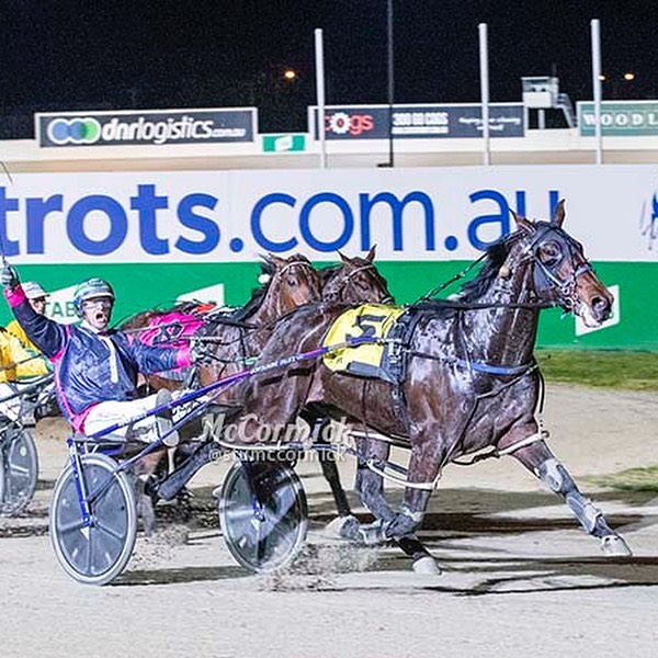 Scenes at @tabcorp_park as @michaelstanleyharness and Yejele Hammer claim the Alabar Vicbred Super Series Group 1 final for 2YO boys. #harnessracing #horseracing #horse #horses #thetrots #vss19