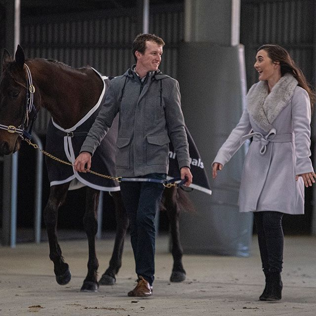 WELCOME TO THE BIG TIME! Blake Jones and Ellen Bartley ready their hope, Forever Yin, for the grand stage: the Alabar Vicbred Super Series 2YO colts and geldings final. Great snap @ashleabrennan  #harnessracing #horseracing #horse #horses #sport #thetrots #vss19