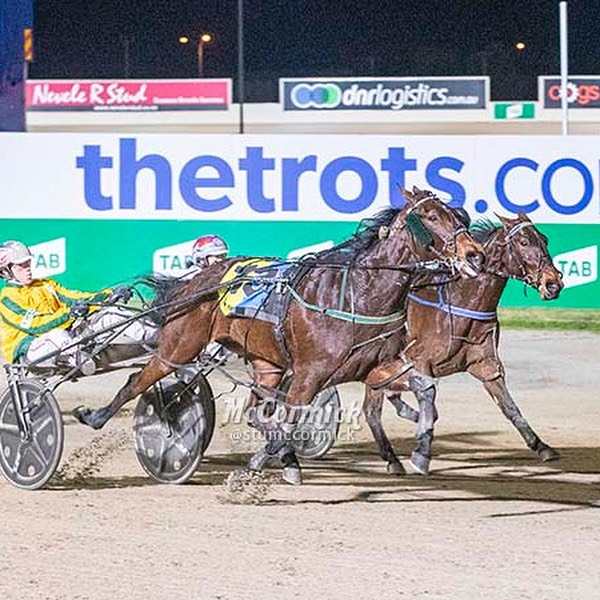 What an extraordinary night for @tonkinstewartracing #winning five Alabar Farms Vicbred Super Series finals. #wow so many happy owners, drivers and breeders along with a rapt Emma Stewart and Clayton Tonkin stable. #harnessracing #horseracing #sport #horse #horses #thetrots #vss19