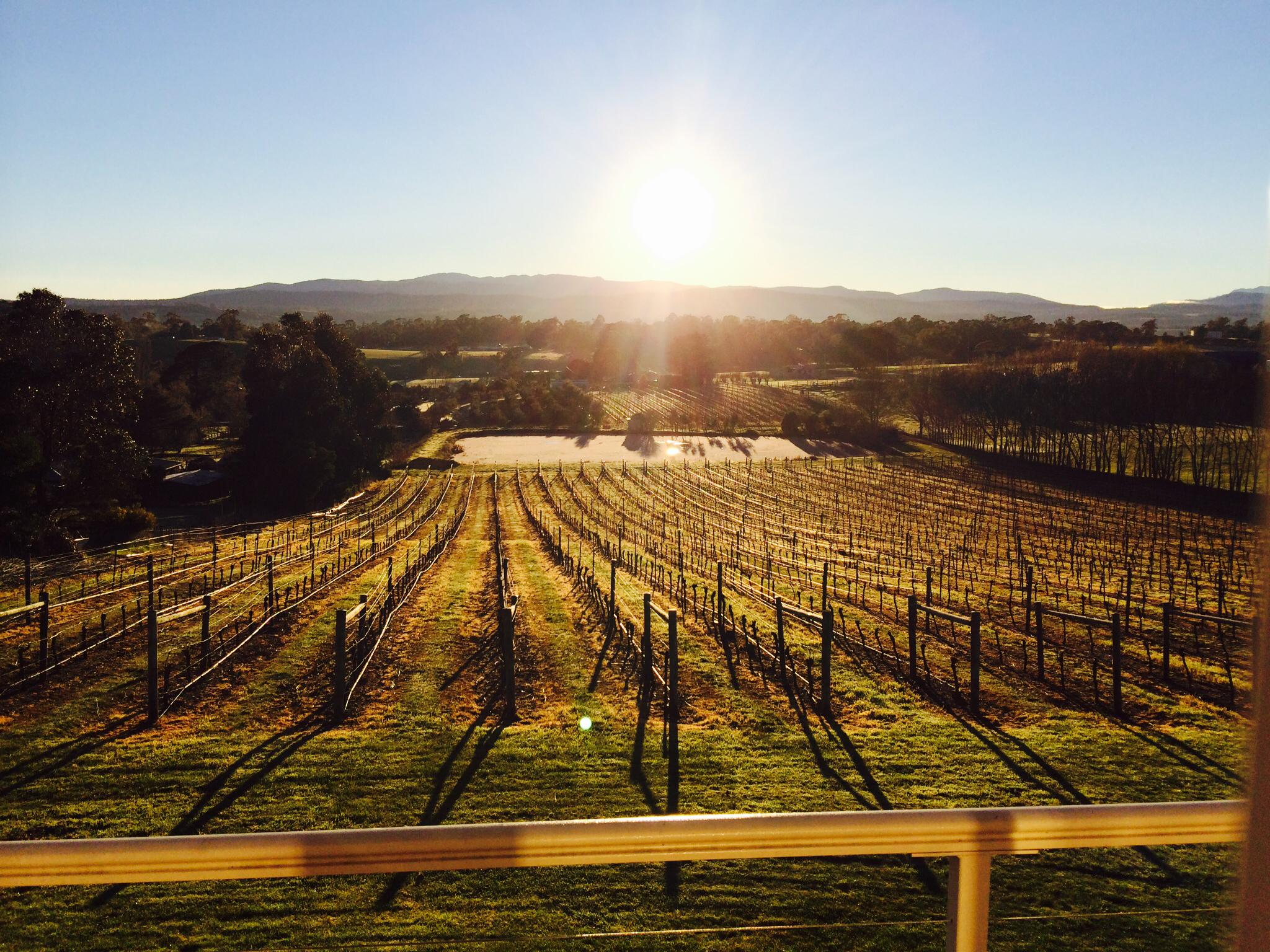 Jinglers Creek Vineyard - The Granary Heritage Accommodation