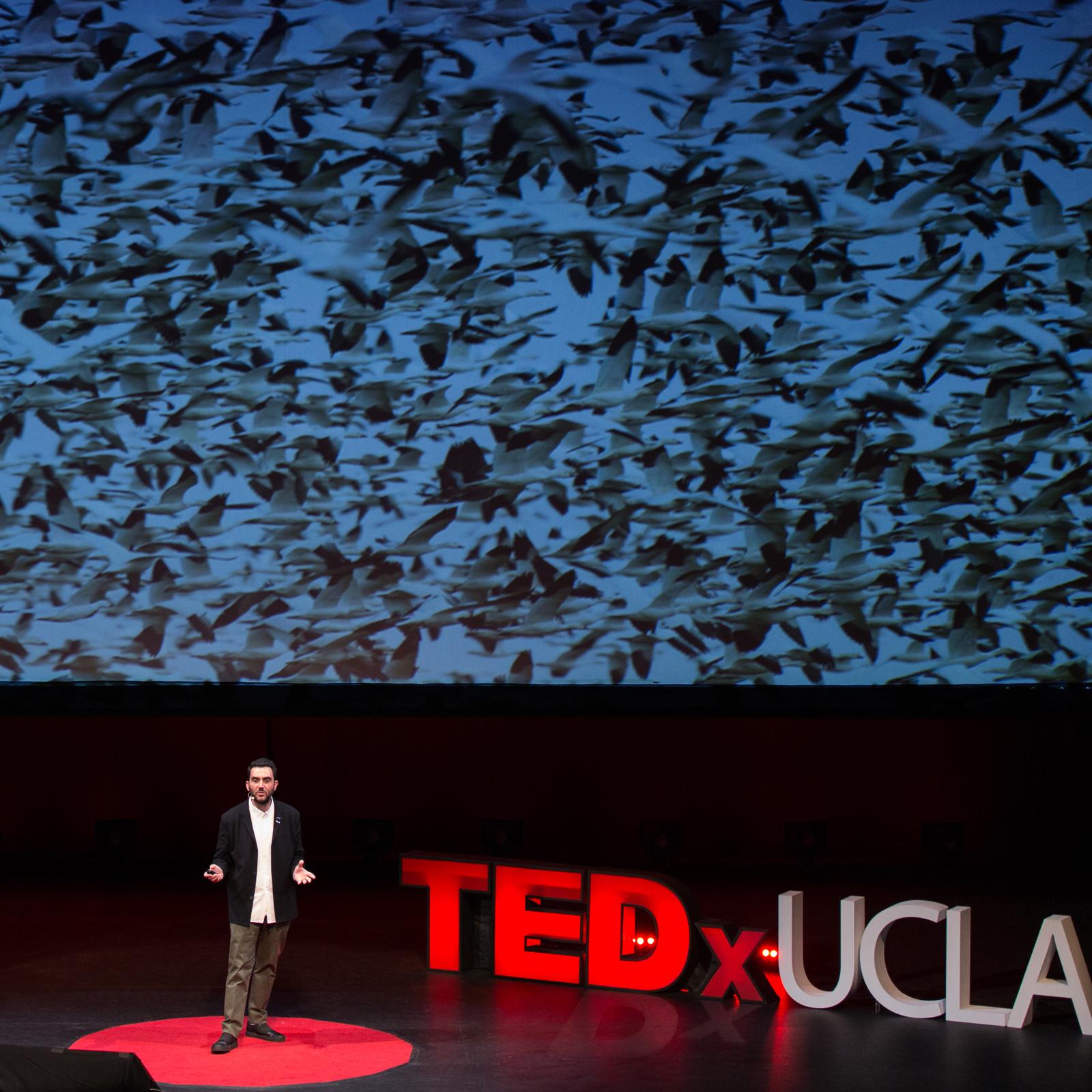 TED X UCLA  ROYCE HALL