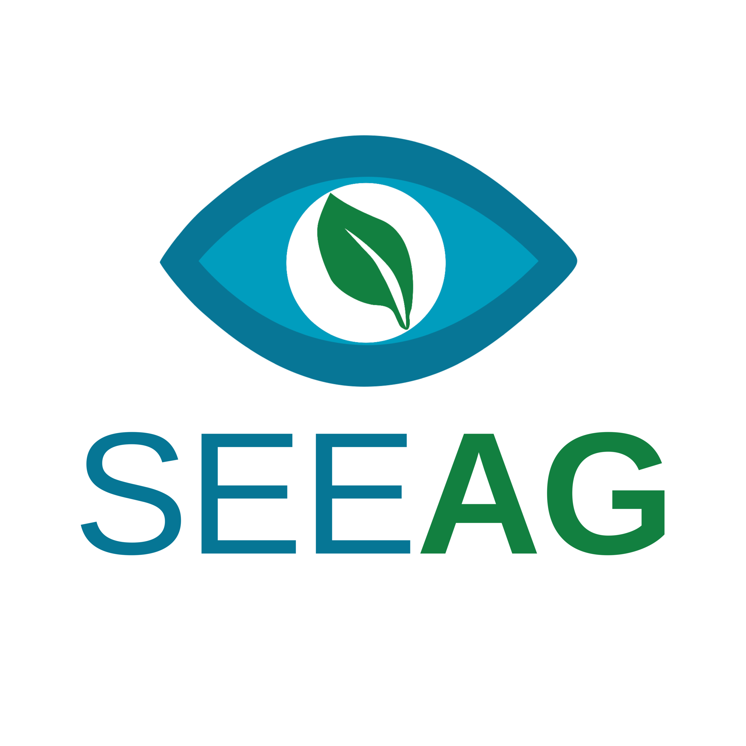 SEEAG (Full Color).png