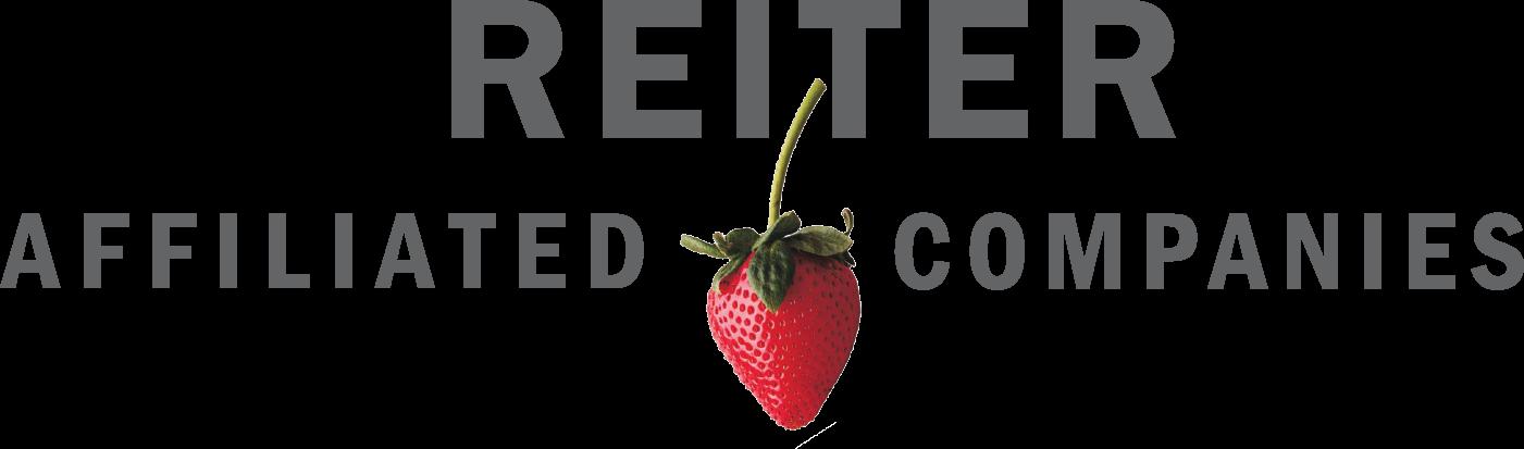 Reiter Logo Grey.png