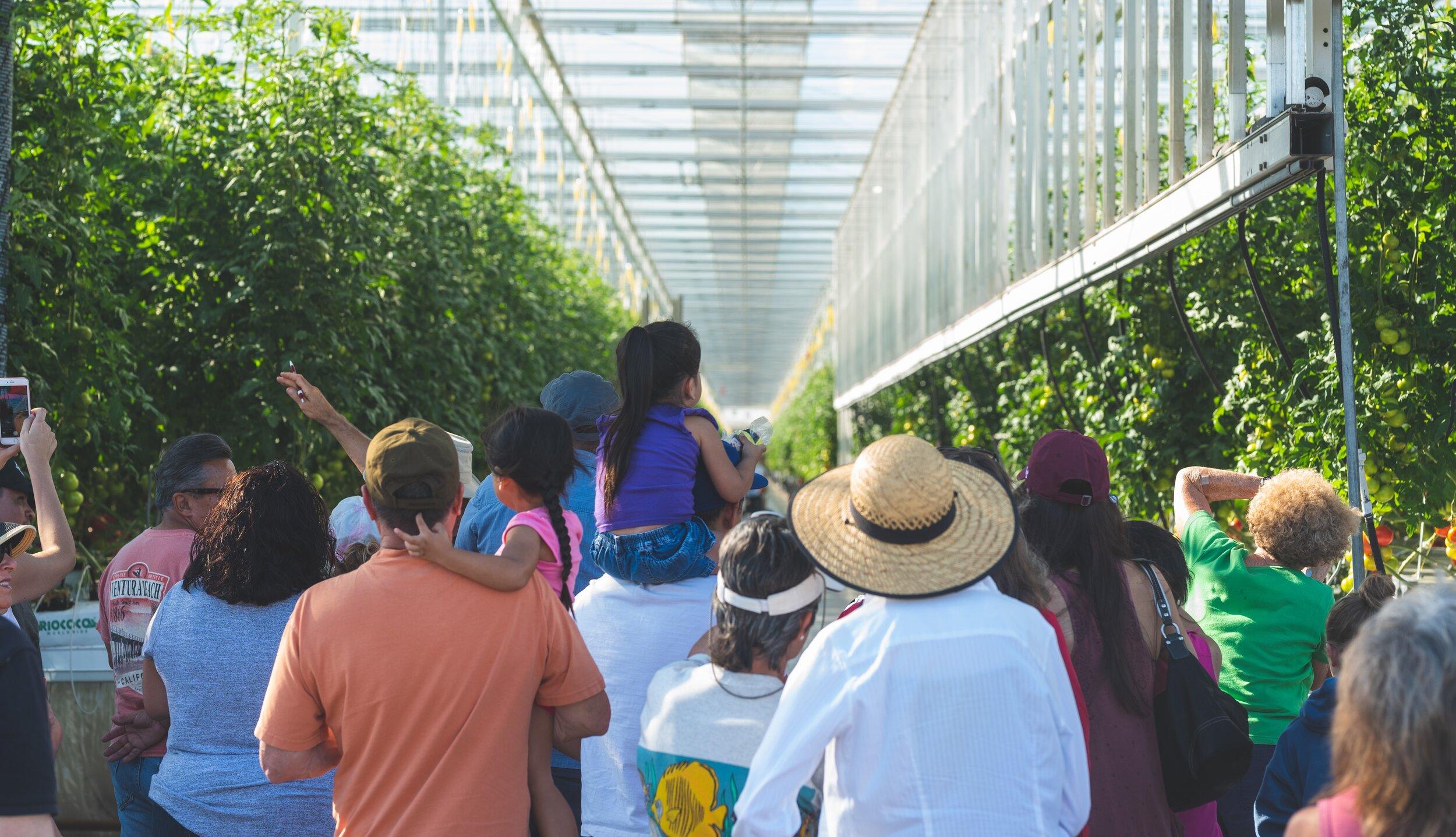 crop_Farm-Day-2018-356.jpg