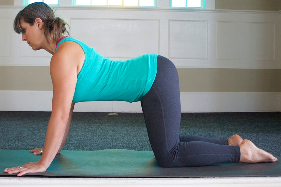 - In Cow, the effort is accentuated in the upper body, arms pulling back so the sternum can pull forward. The belly supports the front body so the mid- and low-back don't simply collapse in gravity.