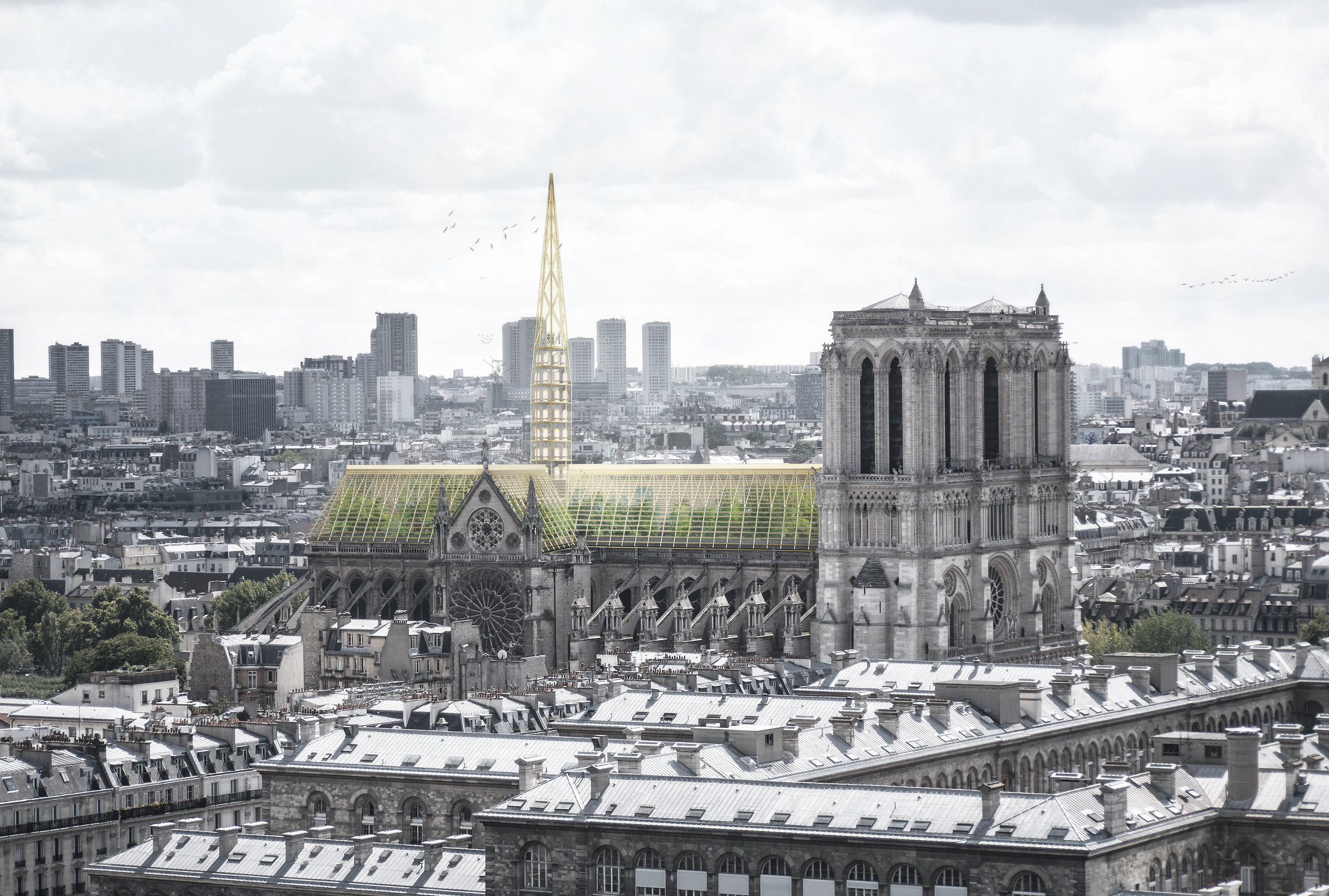Notre Dame de Paris_visuel01_©Studio NAB.jpg