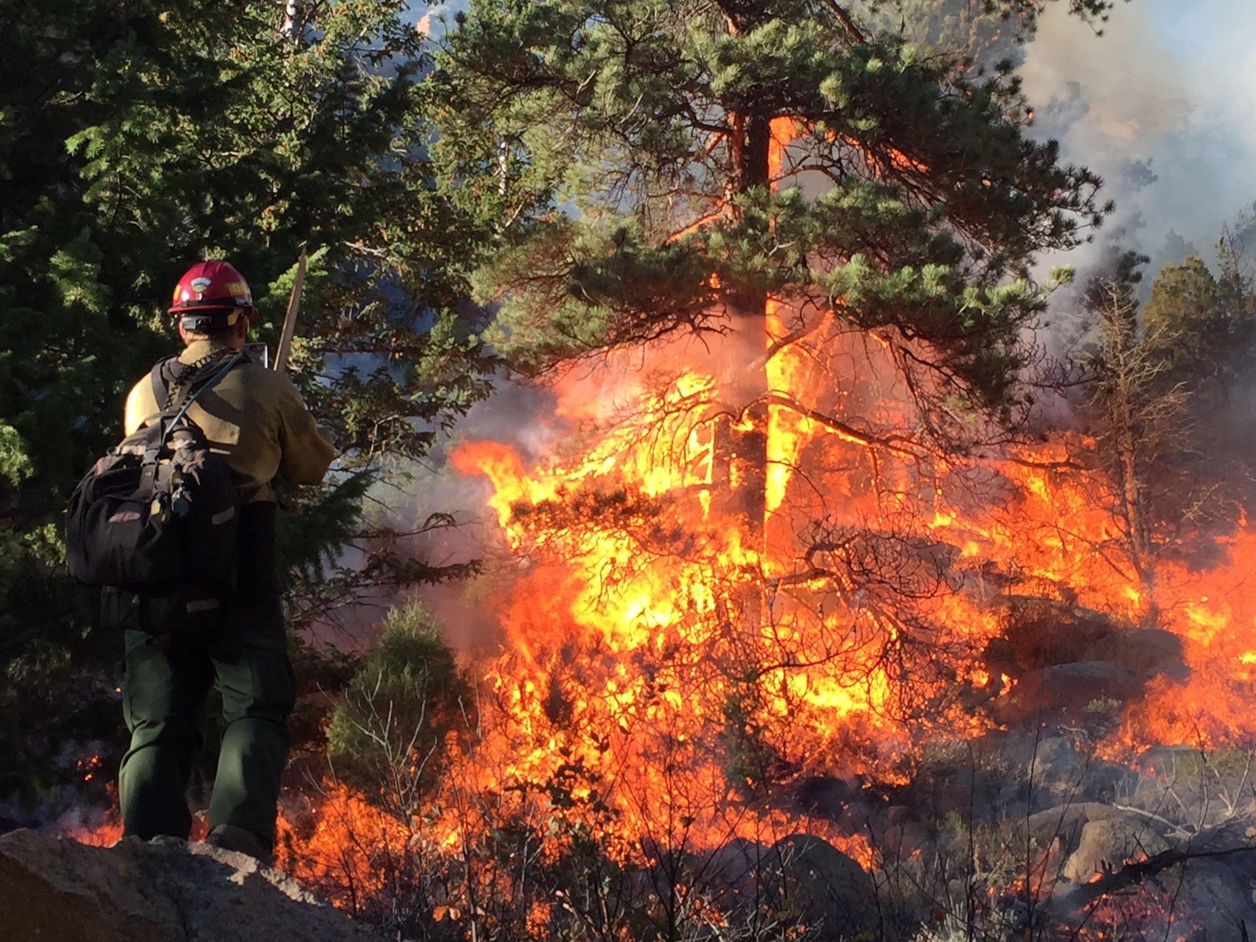 A coworker admiring his handywork on a controlled burn in Colorado 2016.