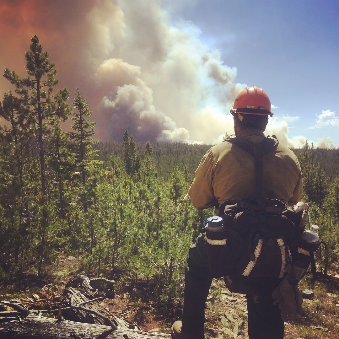 Applying to Become a Wildland Firefighter — How to Become a Wildland