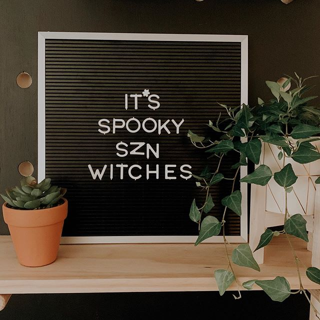 It's spooky season, Witches 👻🎃Still dying to watch Hocus Pocus as soon as the leaves change! || Our little pegboard has been so much fun to decorate ! The full video on how we built and decorated it will be up on Friday ! 🍂🍁 . . . . . . #pegboardstyling #pegboard #pegboarddecor #blogger #blog #letterboard #diy #homerenovation #homedepot #beautyblogger #homedecor #homedecorblog #chicagoblogger #lifestyleblogger #foodblog #chicagofoodie #plantmomaesthetic #plantmom #targetstylehome #targethome #tezzaapp