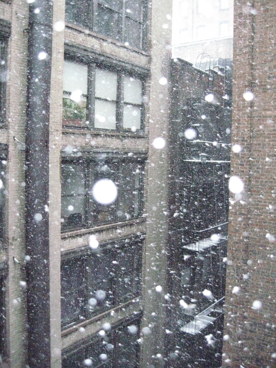 Snow from my office window.