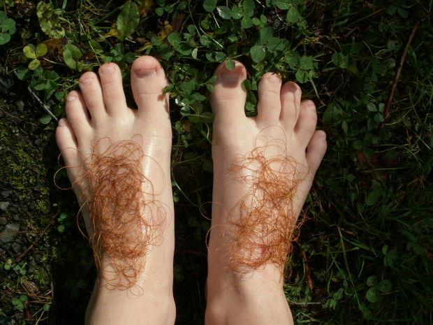 hobbit feet.jpg