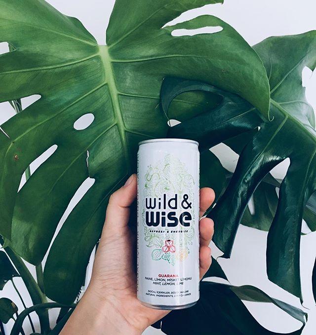 Gücünüzü Wild&Wise Yeşil'den alarak haftaya ferah bir başlangıç yapabilirsiniz. Çünkü içinde nane, limon ve guarana'nın tazeliği var! #bewildandwise