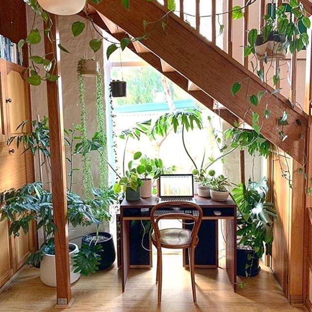G O A L S // Design inspo via @charlieandjack.com.au . . . . . . #decorinspo #designinspo #interiors #homedecor #houseplants #vintage #slowdeco #officegoals #retrovibes #girlboss #womeninbusiness #yyz #shoptoronto #dundaswest #duwest #rosecitygoods