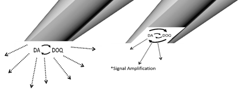 microcavity-electrodes-a.jpg
