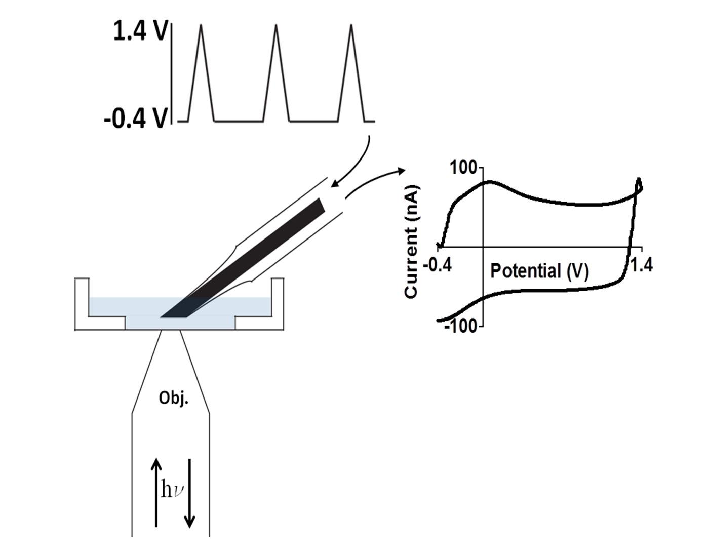 raman-spectroscopy-a.jpg