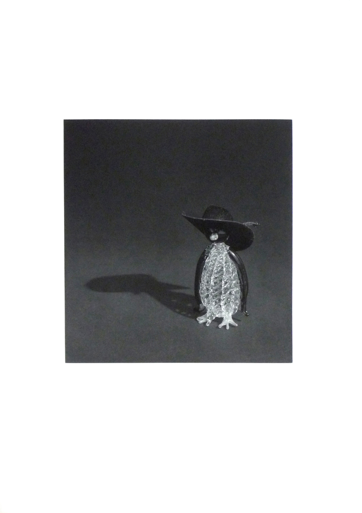 Pingüino con sombrero negro,  2009