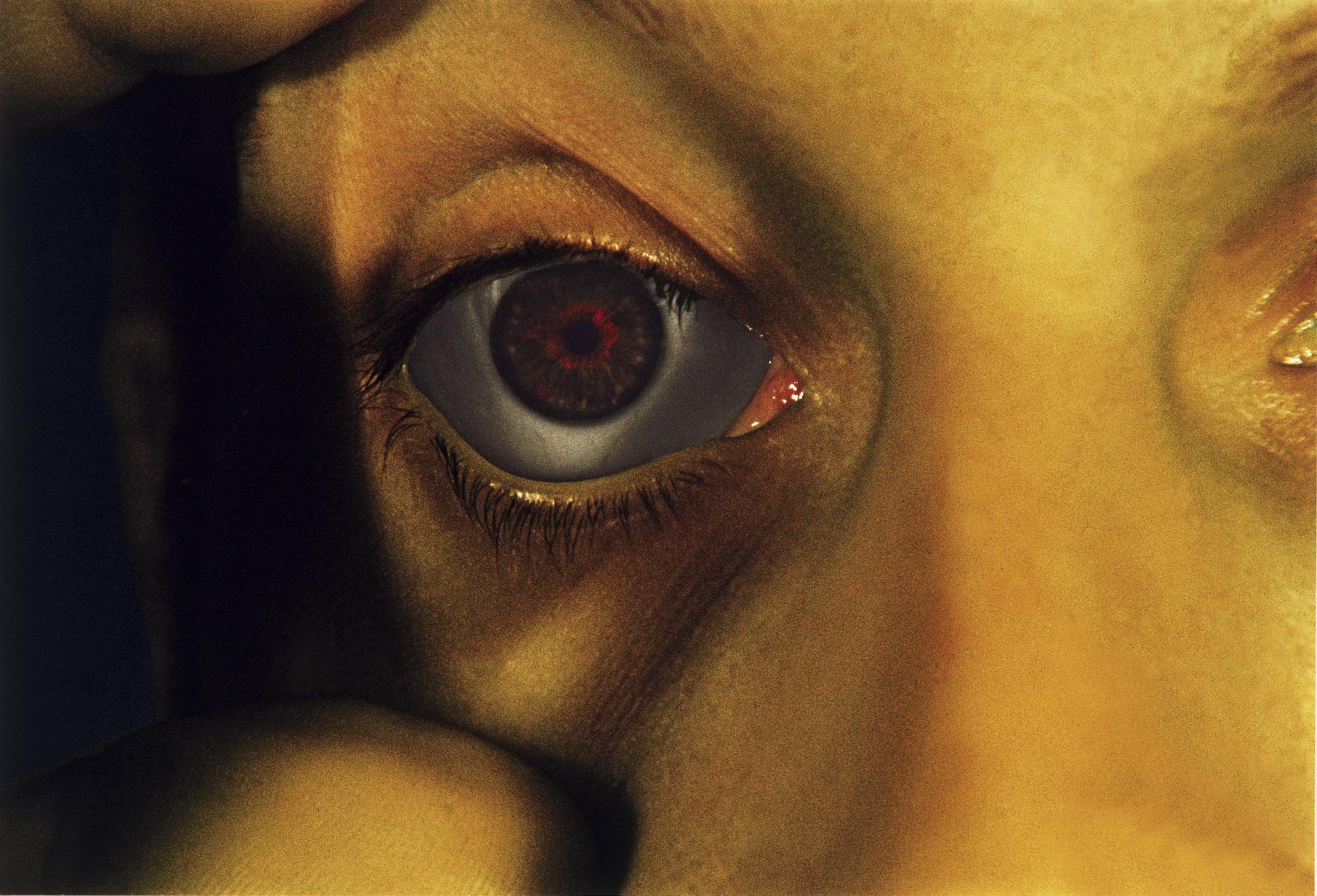 Opened Eye,  2006