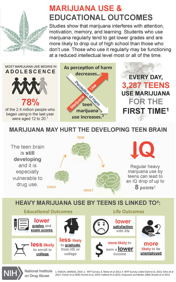 Marijuana Education Infographic(1).JPG