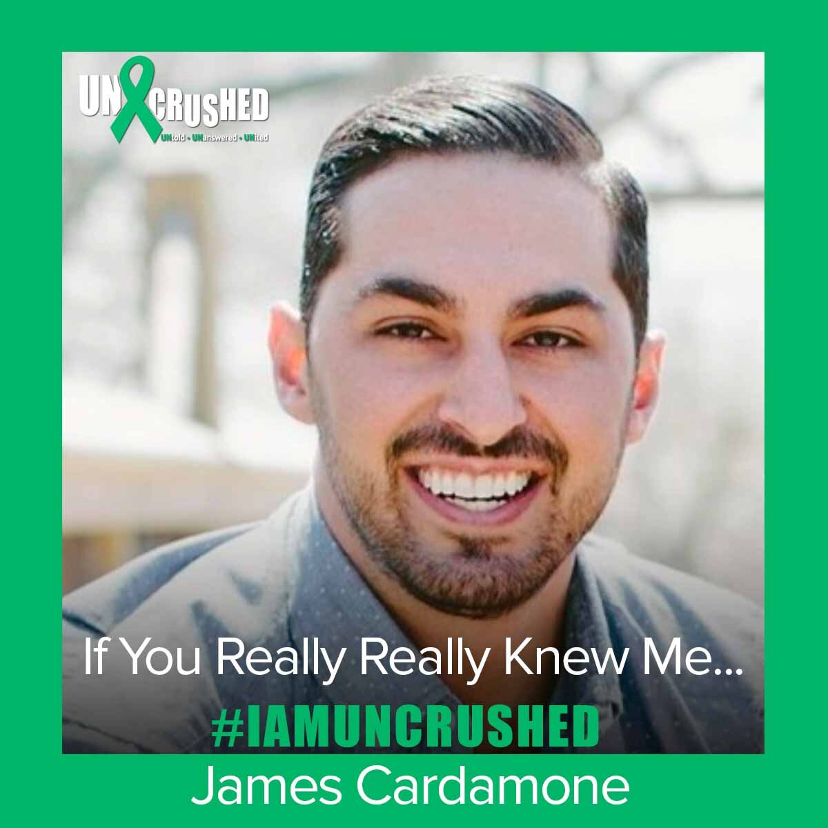 Read  If You Really Really Knew Me…  by James Cardamone.