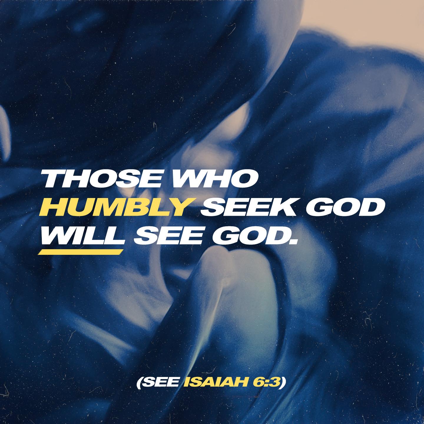 seek.jpg