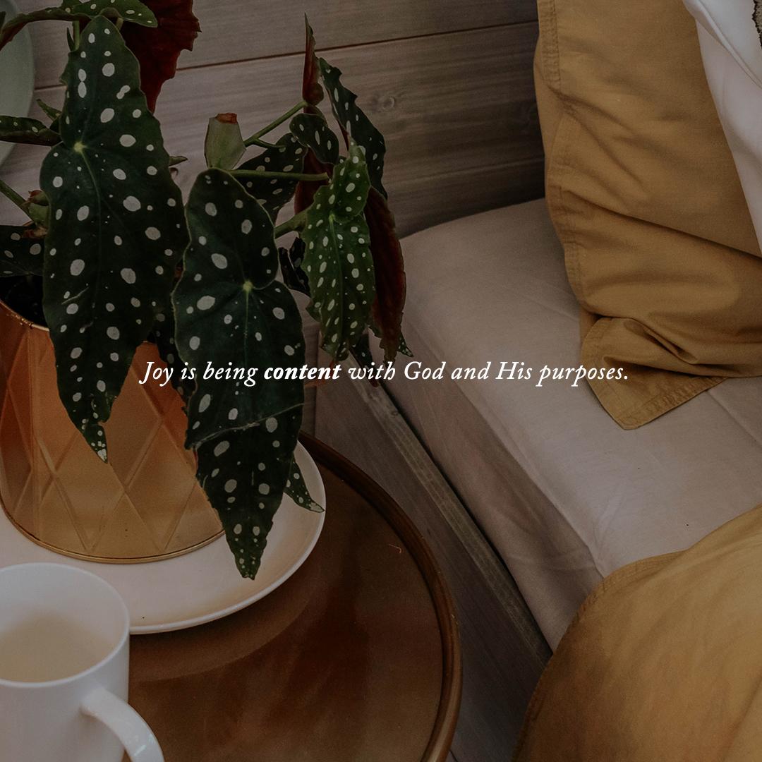 joy_v2.jpg