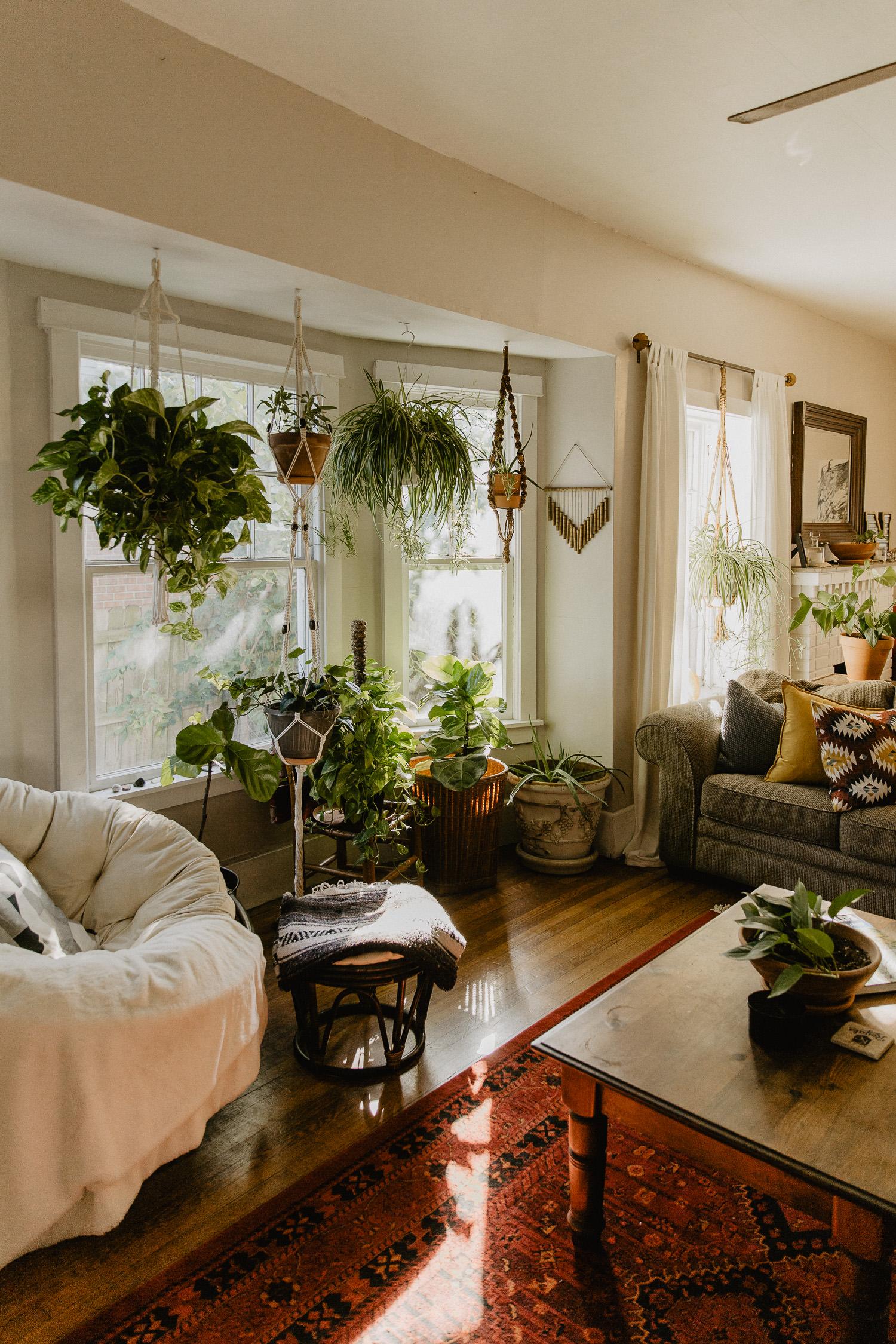 Plant_Filled_In_Home_Session-Ivory_&_Oak-1.jpg