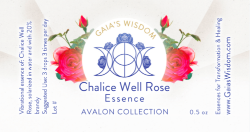 chalice well rose flower essence