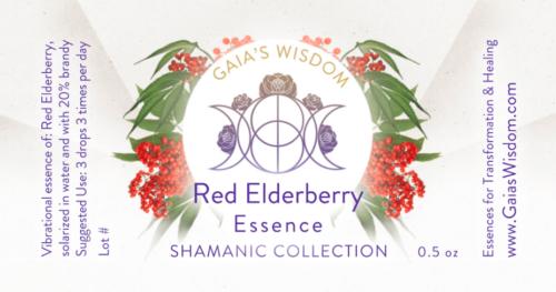 red elderberry flower essence