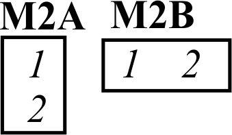2A 2B.jpg
