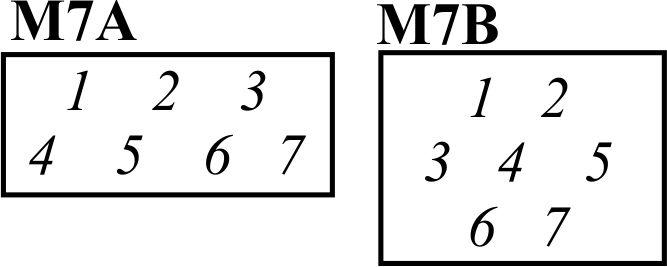7A 7B.jpg
