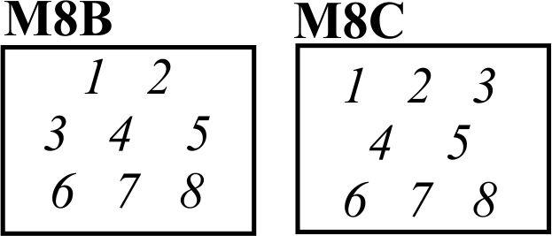 8B 8C.jpg