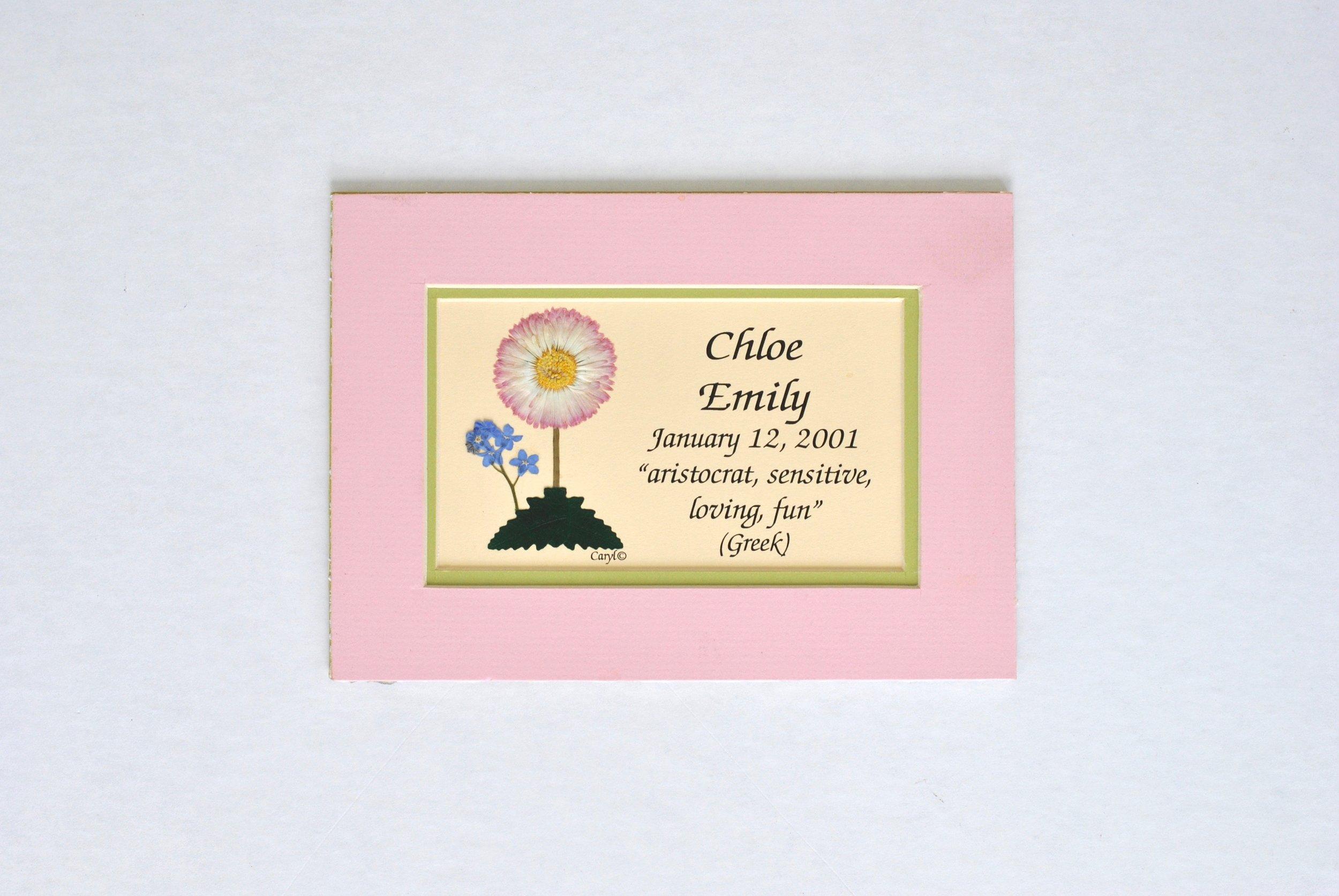 Chloe 5x7 unf W1.jpg
