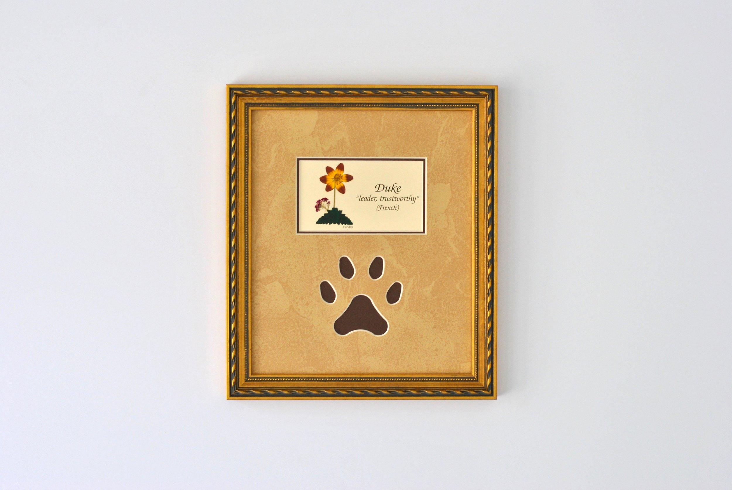 Paw Noglass Bronze W4.jpg