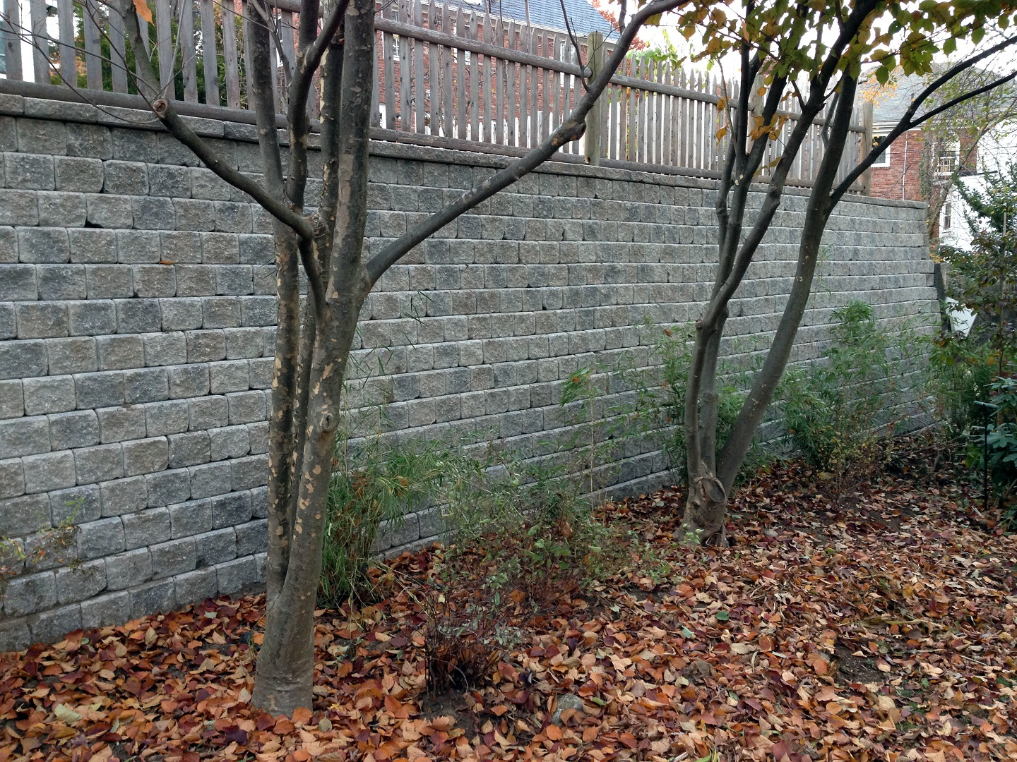 Landcape design with retaining wall in Belmont, MA