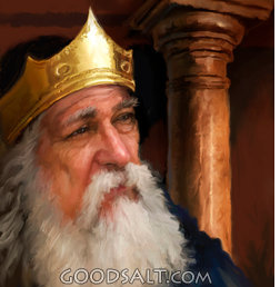 Blog-King-David-in-Old-age.png