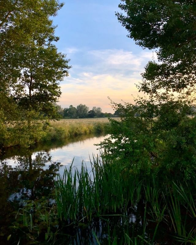 The view from 'Sunset Corner' on our campsite, the best place to watch the sun go down #RushbanksFarm #Sunset #RiverStour #AONB #Suffolk #Essex #Camp #Campsite #camping #campinguk