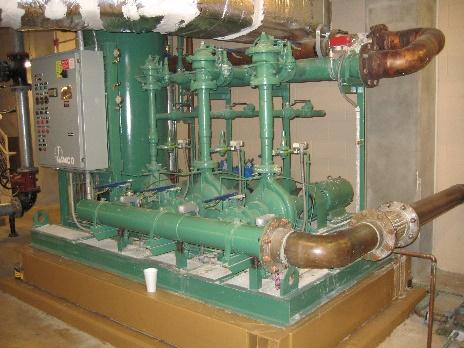 St Joseph-MEP-green pumps.jpg