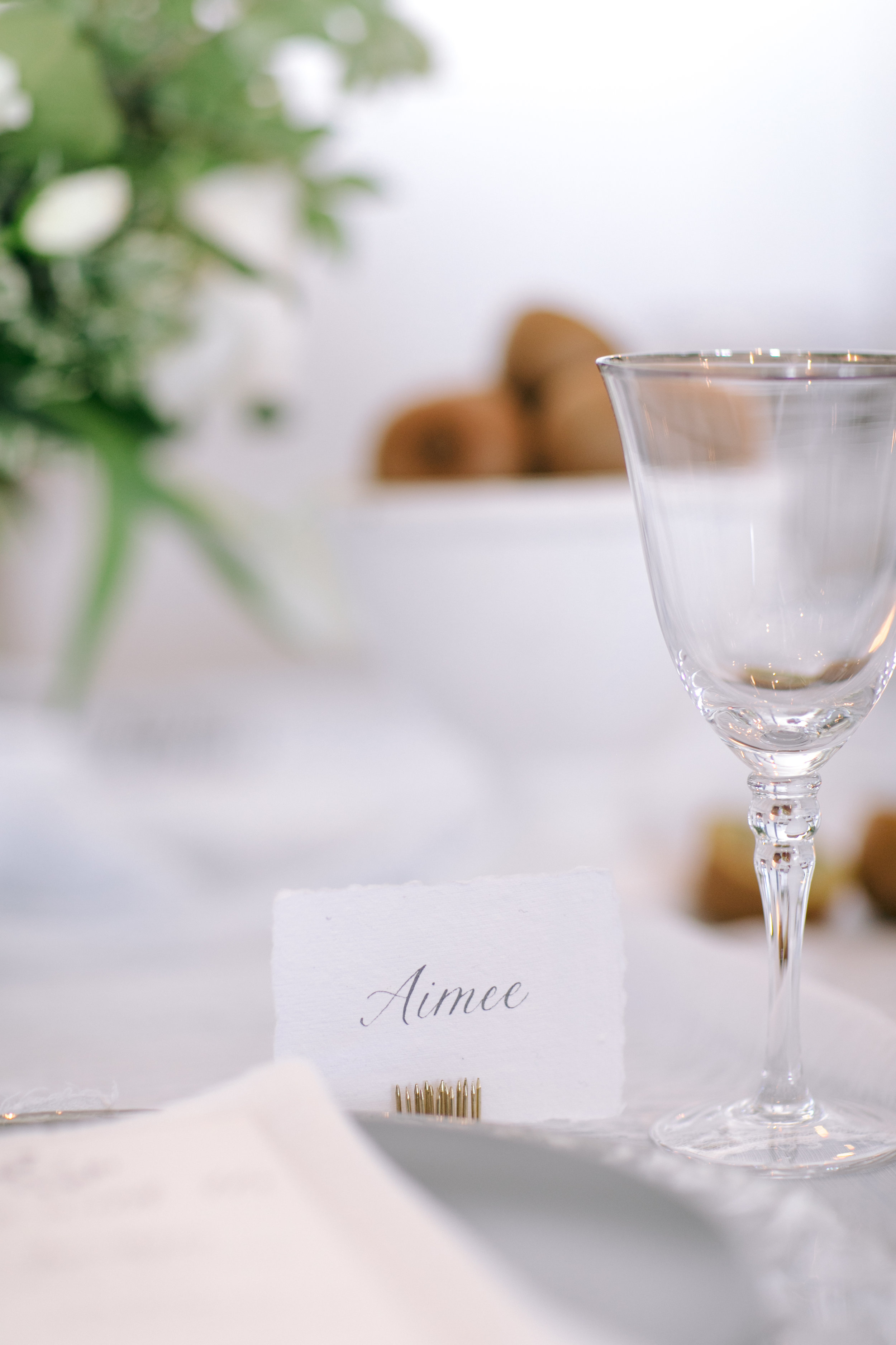 Gasparilla Inn Wedding Jet Set Wed escort card kiwi-1478.jpg