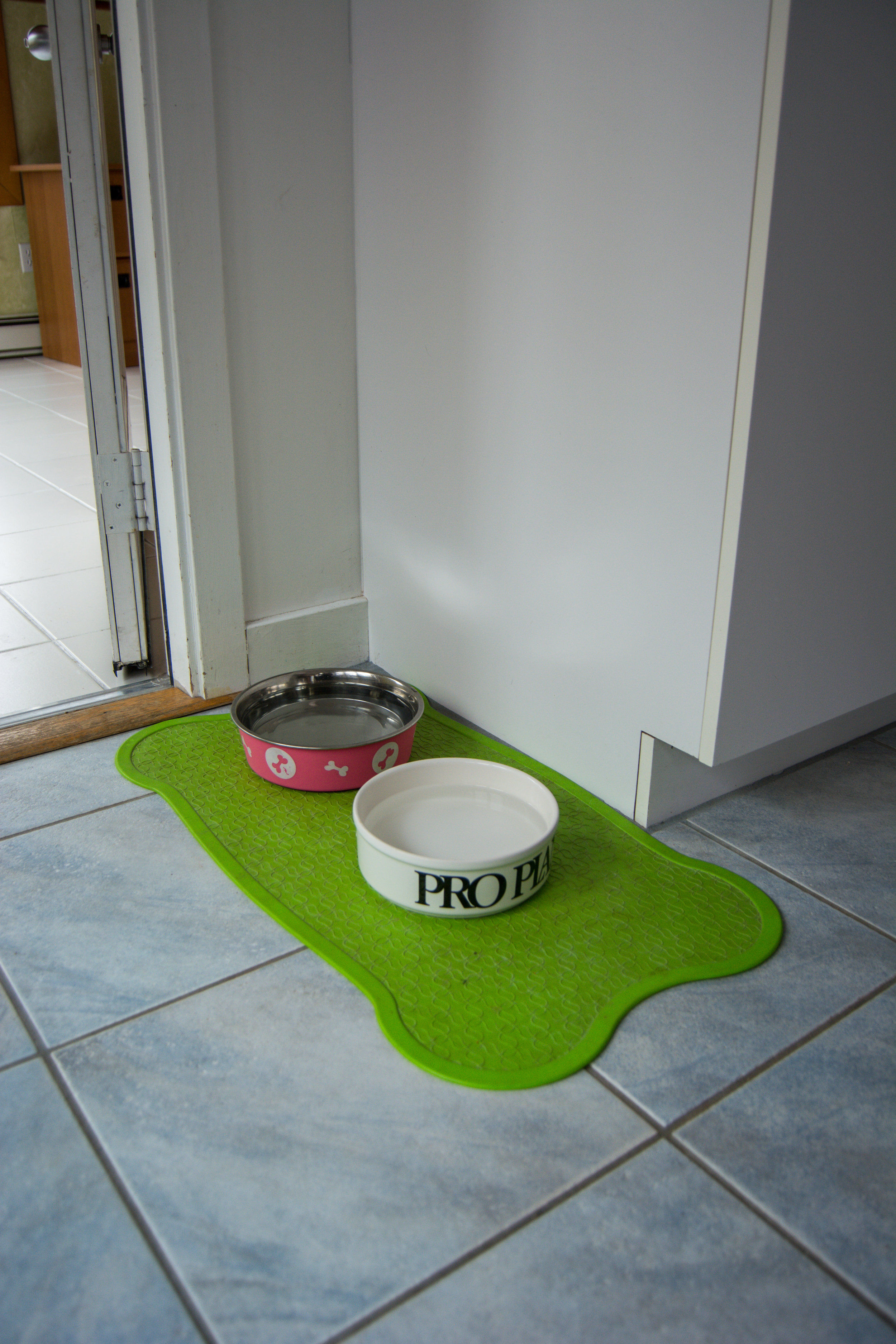 Each dog has their own feed bowl and water bowls are located around the home and outside