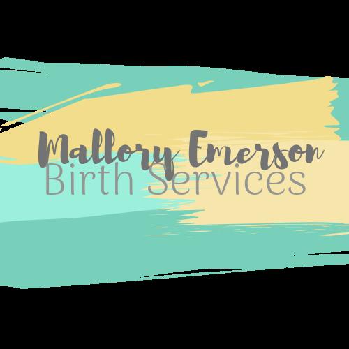 MEBS Logo transparent.png